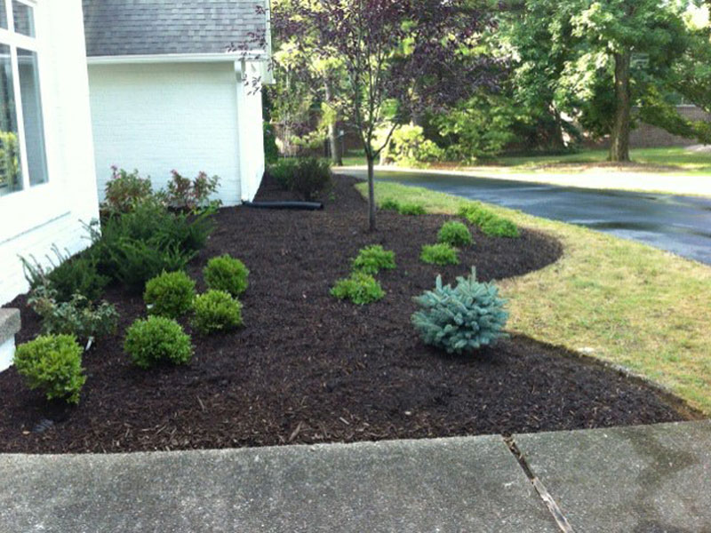Indianapolis Landscaping